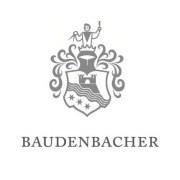 Logo Baudenbacher GmbH