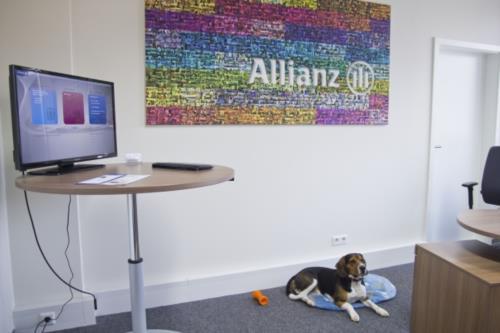 Allianz Generalvertretung Christian Pfeifer - Bild 1