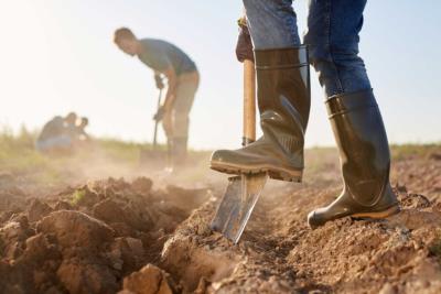 Saisonarbeit – Definition, Rechtliches und Tipps - BERATUNG.DE