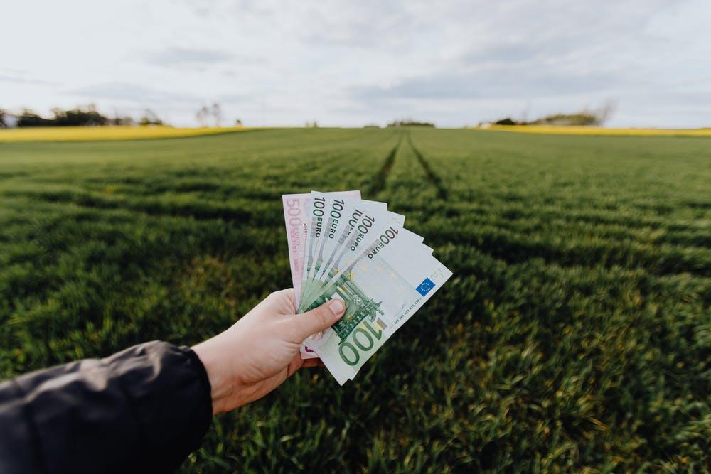 Güterstand, Güterrecht & Vermögensaufteilung – Regelungen für Ehe und Scheidung - BERATUNG.DE